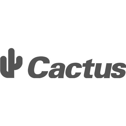 cactus :