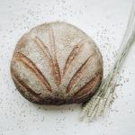 L'histoire du pain – uk