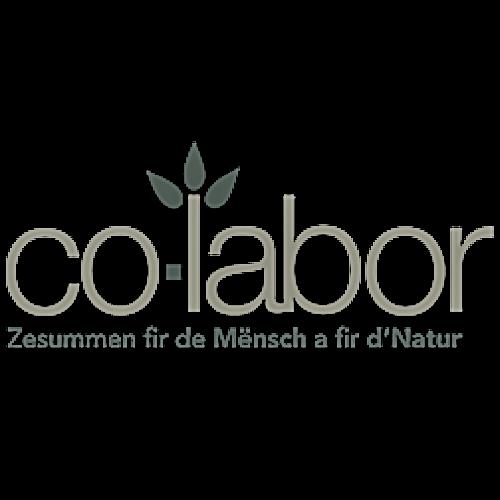 co-labor : Brand Short Description Type Here.